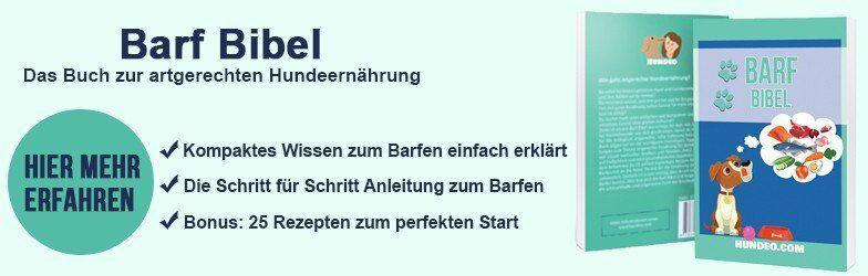 Taschenbuch Barf-Anleitung